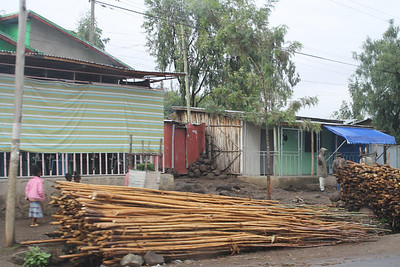 Big piles of eucalyptus in every village - lots of the homes built with eucalyptus.
