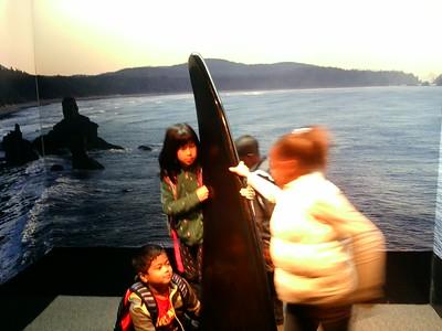 2015 June Aquarium Field Trip