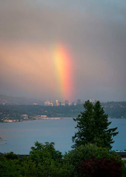 Rainbow over Bellevue