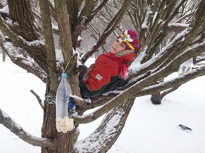 2017-02-23, Climbing trees in Dubki with Dasha