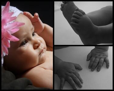 6 month old Amanda
