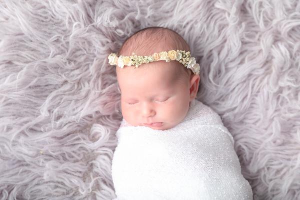 Abby Newborn 2018
