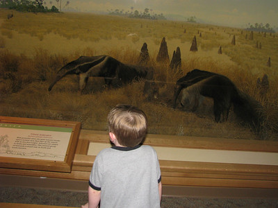 He loved the museum
