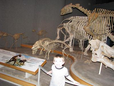 Alex LOVES dinosaurs