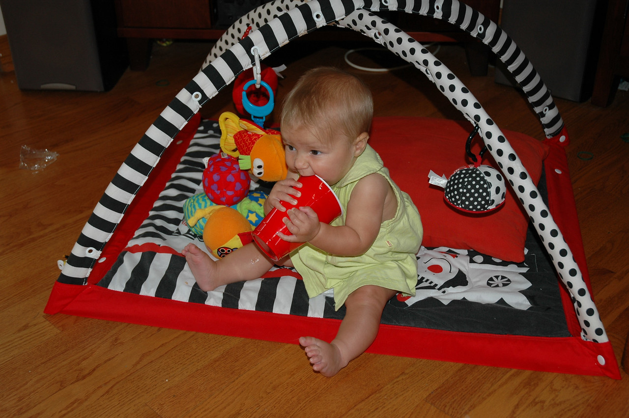 All these toys but I like plastic cups the best