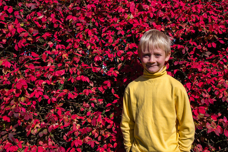 Xavier at the Morton Arboretum