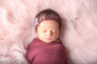 Arce Newborn