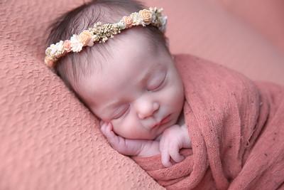 Ashley Newborn 2016
