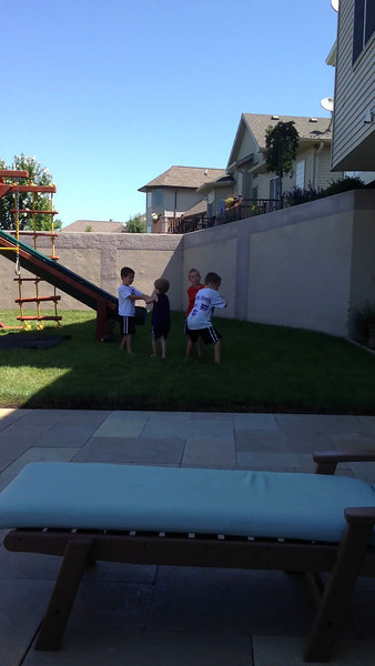 Video.  Playing with the neighbor boys.