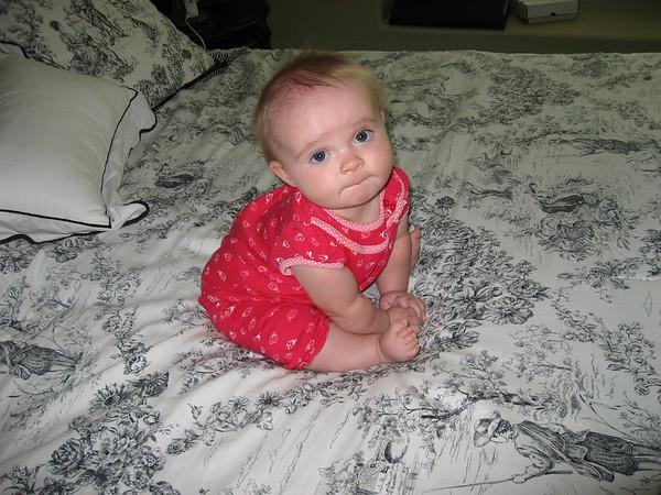 Aurelia Sitting Sept 08