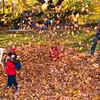 Autumn_Leaves_13