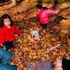 Autumn_Leaves_21