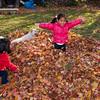 Autumn_Leaves_12