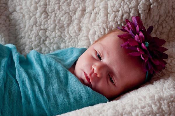 Avery~Newborn
