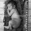 Baby Benjamin_530
