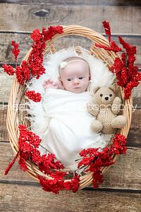 Baby Charlotte & Family 2016_249