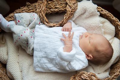 Baby Hadley D