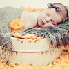 Baby Sophia_671