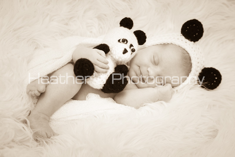 Baby Sophia_683