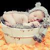 Baby Sophia_678
