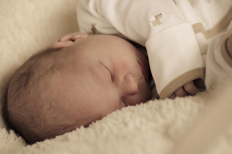 IMAGE: https://photos.smugmug.com/Children/Blake-Steven-Birds-Newborn/i-QPLqvSk/0/L/0U6A0031-L.jpg