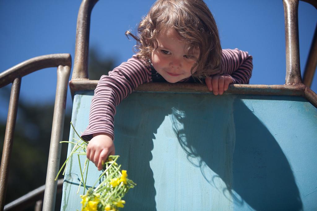 Blossoming Lotus nursery school