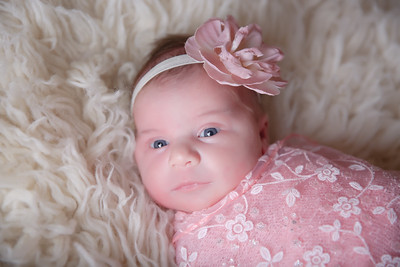 Bohn Newborn 2017