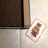 Cat & Scratch Lounge