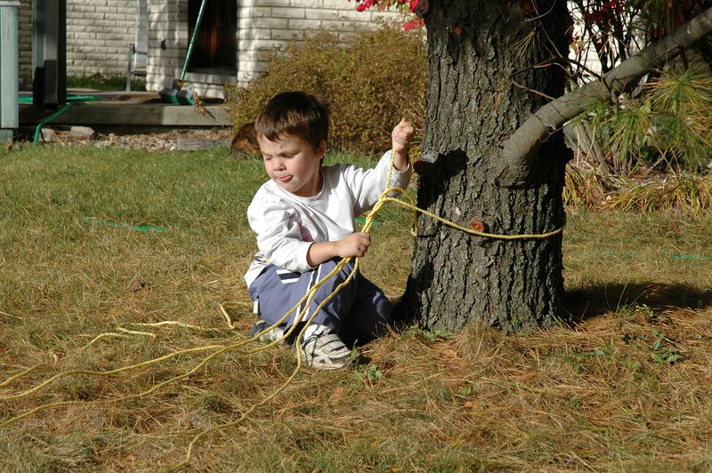Charles carefully ties the knots to capture the tree