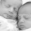 Counce & Charli Ruth- 1 week :