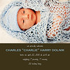 Charlie Dolnik Birth Announcement 1