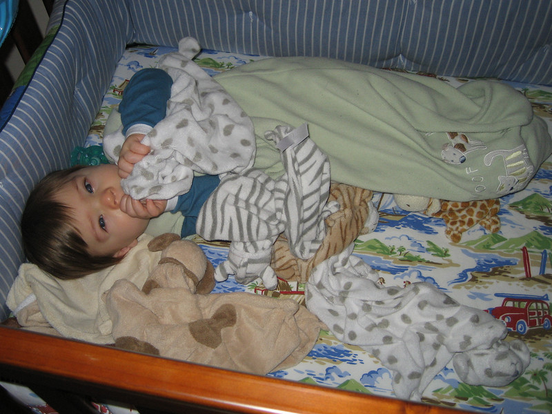 This was Chase's Monday morning wake-up.  Safe and sound and protected by his herd of blankies.