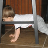 Chase trying to crawl through the stools in the kitchen.