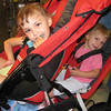 Bella and Rosie (Buddy's kids)