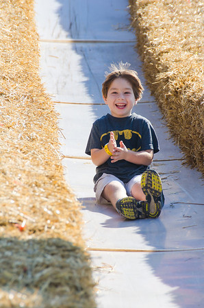 Cox Farm 2012