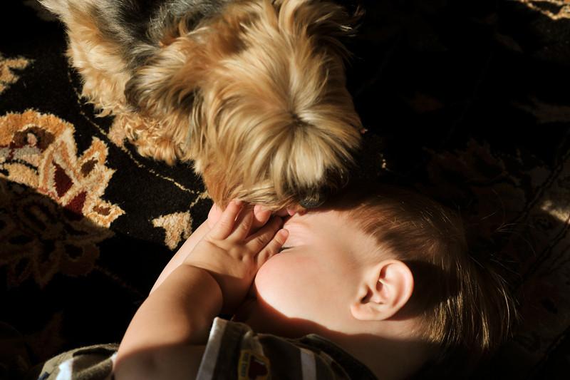 My Dog & Me