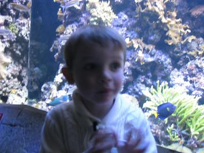 Christmas Program and Aquarium 090