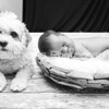 Colin's Newborn Photos_609