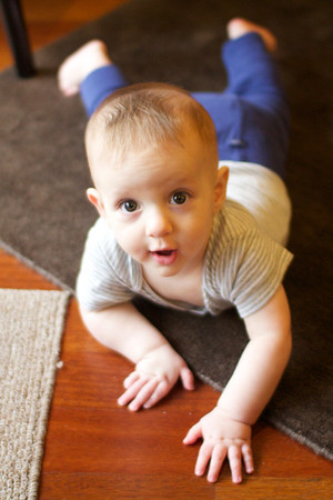 Collin - 9 months old