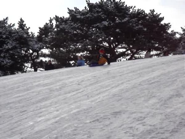 Another sled run