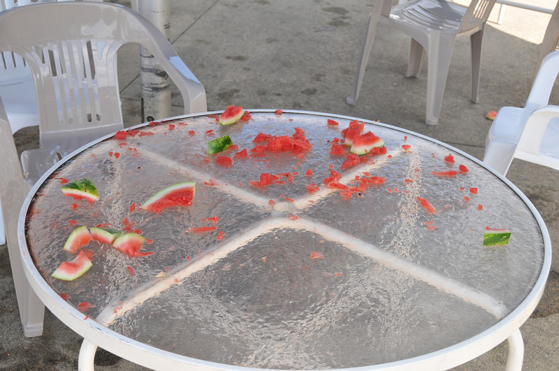 Shattered remains of a once valiant watermelon