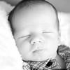 Covington_Baby_2015_ 3