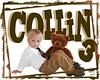 Collin 3