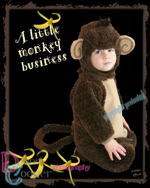 593 8x10 monkey business