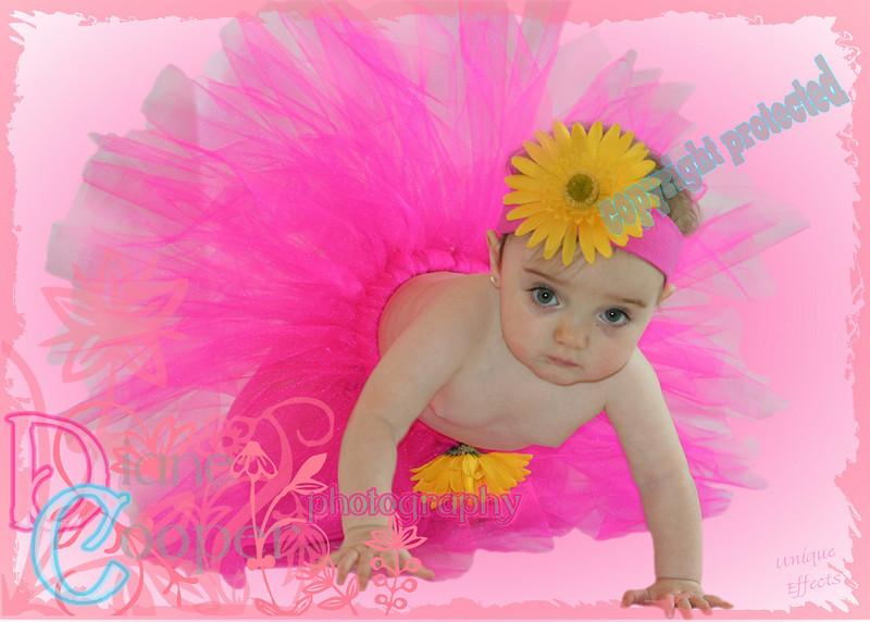 0989 5x7 pink sweet flowers