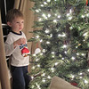 Chase really enjoyed decorating the tree!