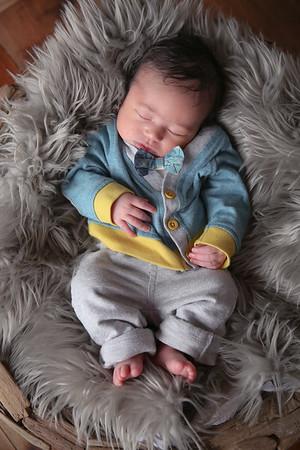 Desmond Newborn 2016