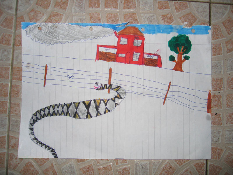Mikey drew this picture after seeing a story of an Australian sheep farmer who was losing sheep. He installed an electric fence, and found a huge snake stuck in it the following day..