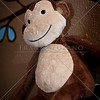 franklozano_20111225_0385