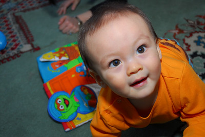 Dylan--Month 8